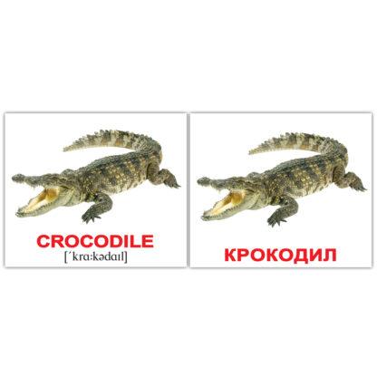 """Карточки Домана """"Водные животные/Water animals"""" (Русские/Английские, Украинские/Английские)"""