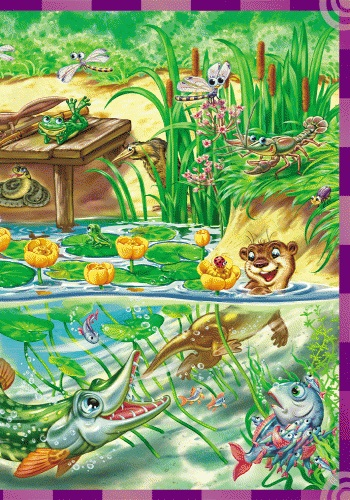 Книга: «Найди и покажи. Кто в воде живет»